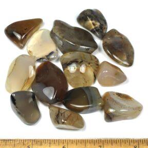 Montana Moss Agate Polished Stones