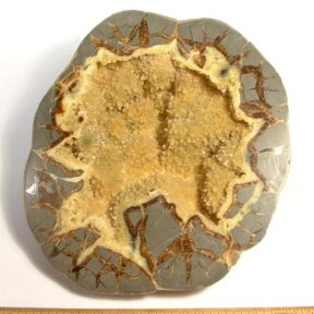 end cut from a Septarian Nodule from Utah