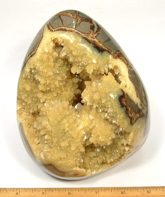 Septarian Free Formcarved from a Septarian Nodule