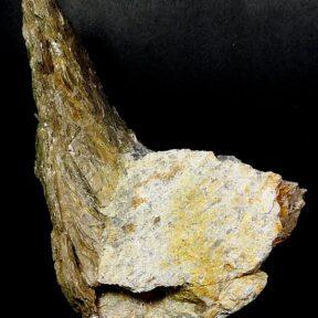 Fishtail Mica