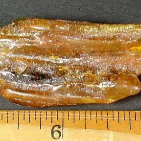 Copal specimen from Madagascar